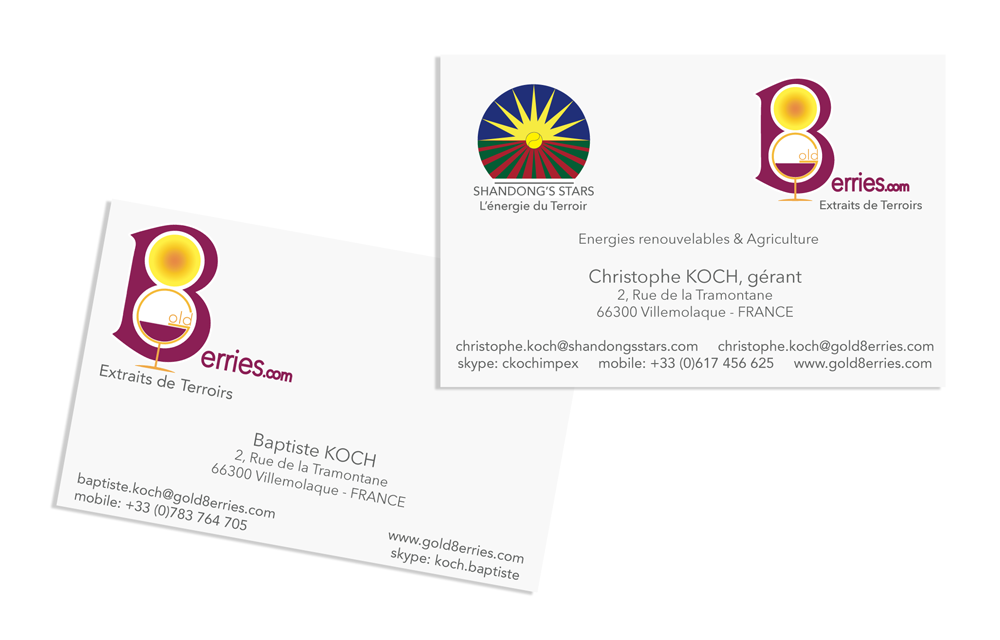 Contact Info Cartes De Visite